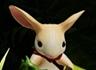 [E3] '모스(Moss)' 트레일러 동영상